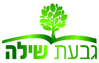 Ramat Beit Shemesh M3